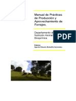10_PRODUCCION_FORRAJES.doc