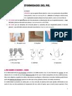 Deformidades-del-pie.pdf
