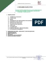 Resumen Ejecutivo Ll-2016 (f)