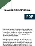 Claves de Identificacion