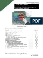 Auditoria_Forense_Una_Misión_JBadillo_Mayo08(14023).pdf