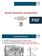 BBMS3011 Synaptic Dysfunction and Depression