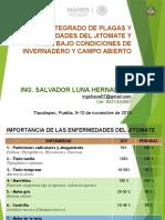 Mip Plagas y Enfermedades Ing. Salvador-fao Nov 2015