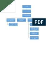 Fisiopatología del actné