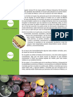 mide.pdf