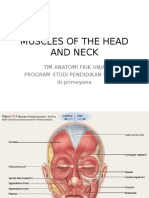Praktikum Anatomi 3 (Muscle of Head and Neck