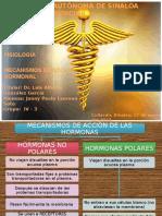 mecanismosdeaccindelashormonas-130120142435-phpapp02