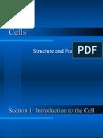 Cells (1)