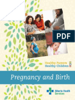 2013 HPHC - Pregnancy and Birth.pdf