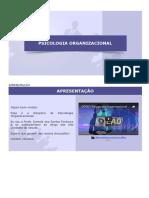 Porganizacional - Apresentação (Com Imagens)