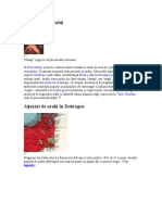 Istorie-Arabi.doc