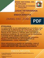 Endocarditis Semio