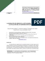 evolucion genomas mitocondriales.pdf