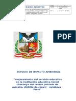 19 ESTUDIO DE IMPACTO AMBIENTAL CORANI.doc