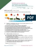 NETXPLICA Http___forum.netxplica.com TESTE de AVALIAÇÃO 8º Ano Ciências Naturais Ecossistemas Fluxos de Energia e Ciclos de Matéria