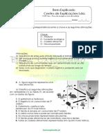 B.2 Teste Diagnóstico Fluxo de Energia e Ciclo Da Matéria 3