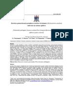 Bactérias Beijupirá Nascimento.pdf