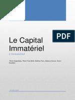 Le Capital Immatériel