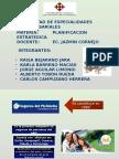 Ppt Gestion Tutorial Presentar123 (2)