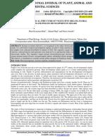 Sesame PDF