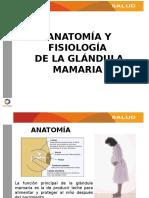 ANATOMIA Y FISIOLOGIA DE LA GLANDULA MAMARIA.pptx