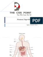 Human Digestive System Class Lecture