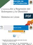 Sistema en Línea Progr.obesidad1