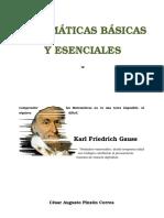 Matemáticas Básicas y Esenciales I