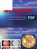 mutagenese-7Mb-1