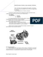 venas coronarias.pdf