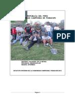 Estatuto de La Comunidad de Pumacuri