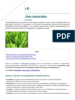 desinflamatorios-caseros