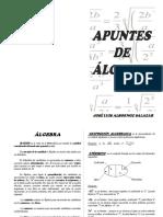 Apuntes Introductorios Algebra