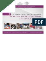 PPI_DOC_TECNICO_DOCENTES.pdf