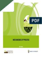 JRJones - Mechanisms of Pyrolysis - Melb 29 Sept 2011.pdf