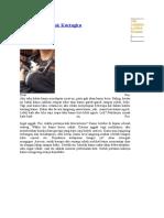 Surat Cinta Untuk Kucingku