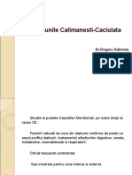 Prezentare Power Point Statiunile Calimanesti-Caciulata