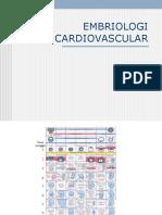 cardiovasculer embryol