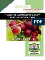 Bebida Hidrattrante de Camu Camu