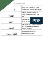 fossils flashcards 3rd grade