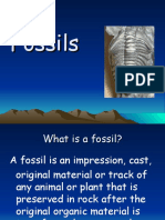 fossils ppt