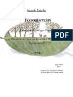 Guiadeestudio-fotosintesis.pdf