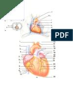 Soal Gambar BSN 3 2013.doc