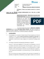 CONTETACION DE LA DEMANDA DE ROLANDO PALOMINO.doc
