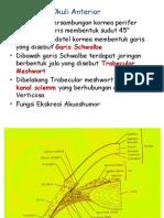 Anatomi & Kelainan Mata - Copy