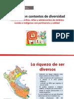 7. Presentación Currículo y Diversidad Cultural - Elena Burga