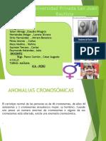 Expo. Anomalias Cromosómicas Numéricas.