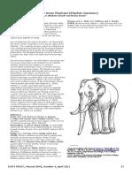 Zygomycosis in captive Asian Elephant (Elephas maximus).pdf