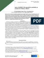 Villahermosa Tomo 17.pdf