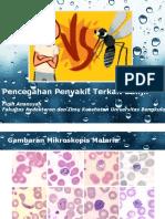 Penyuluhan DBD Dan Malaria